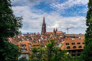 De kathedraal van Freiburg im Breisgau tussen groene bomen van Simon Dux
