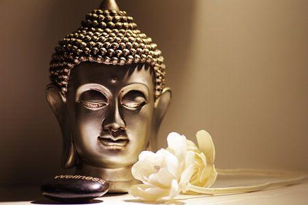 Boeddha hoofd met witte rozen