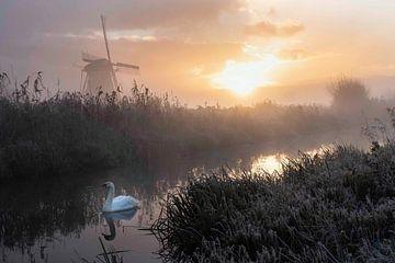 Zonsopgang In Kinderdijk van Lisette Haneveer