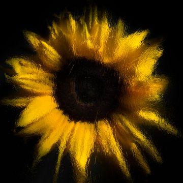 """""""verdampende zonnebloem"""" van Marjolijn van den Berg"""
