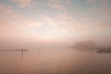 Misty lake van