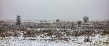 Winter - Markiezaatsmeer von Maurice Weststrate