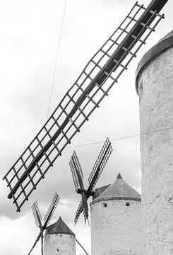 Don Quichot windmolens van Jeroen Kleverwal