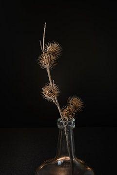 Distel in Vase von Jefra Creations