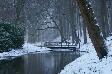Winter in het bos, sneeuw bij de brug van Discover Dutch Nature