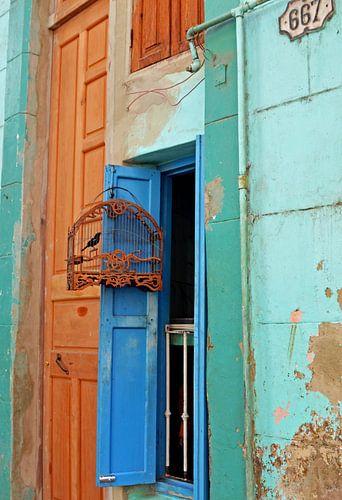 Vintage Birdcage Cuban style van Zoe Vondenhoff