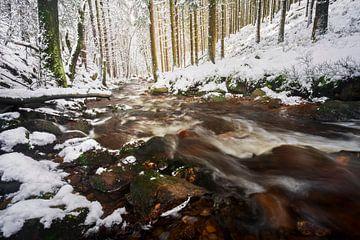 Sneeuw in de Ardennen van Rick Kloekke