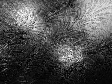 Eiskalt von Anne van der Valk