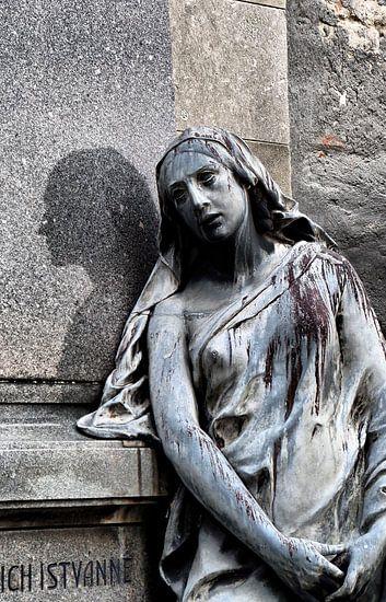 ...ein Land der Lebenden und ein Land der Toten VII von Ilona Picha-Höberth