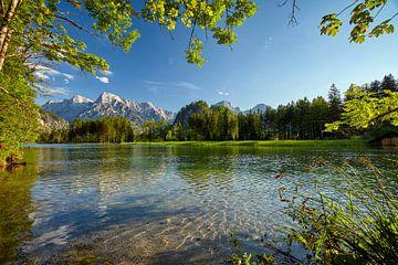 Sommerlicher Alpensee von Silvio Schoisswohl