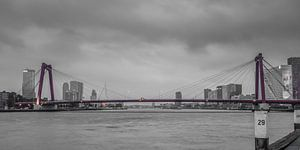 Rotterdam Willemsbrug (67156)