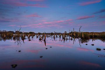 Nationalpark De Alde Feanen bei Earnewâld (Eernewoude) von Annie Jakobs