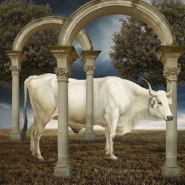 illusionnisme de la vache van Marja van den Hurk