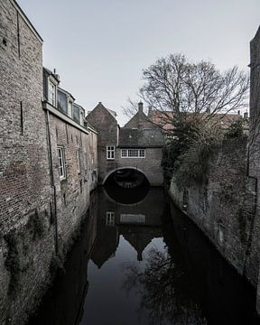 Binnendieze 's-Hertogenbosch van Marc van Tilborg