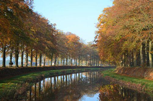 Herfst aan de beek