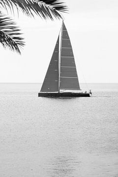 zeilboot von Jehee Fotografie