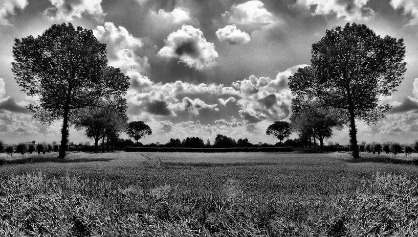 Landschap van Brian van Elsen
