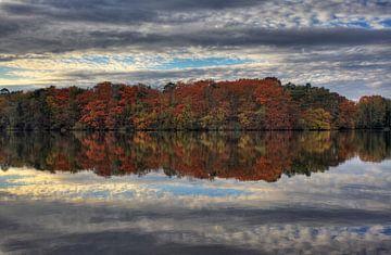 Herfstkleuren  van Steven Reynders