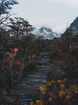 Bergwandeling in Patagonië van Leo van Gemmern