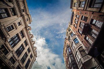 Tussen de gebouwen van Wim Brauns