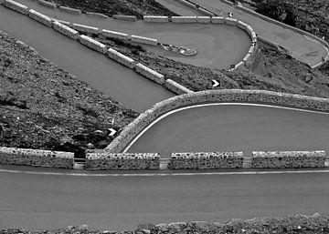 Foto van bergpas Stelvio in zwart-wit von Sander Goedhart