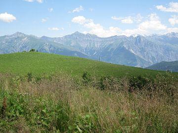 Berglandschap Alpen von Sander van der Lem