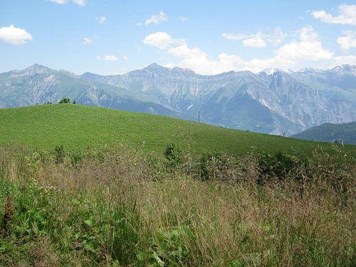 Berglandschap Alpen sur