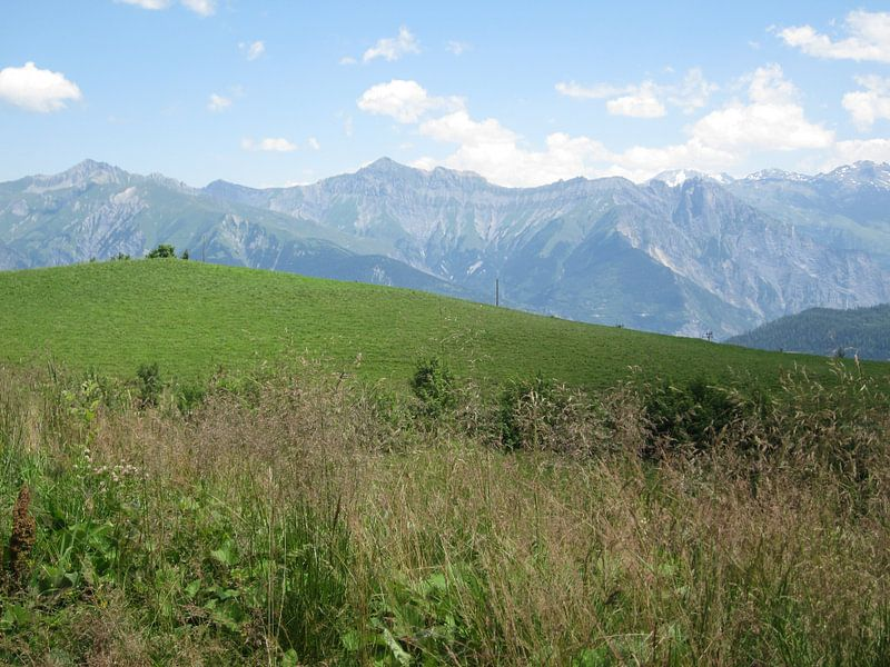 Berglandschap Alpen van Sander van der Lem