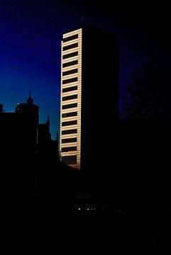 Stadshelden van Utrecht, Stadsheld 4 van Simone Leenders