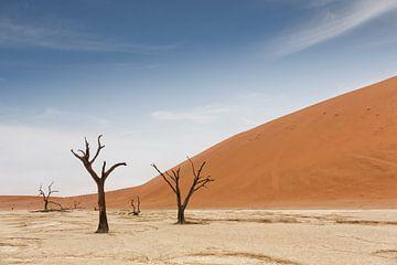 Deadvlei is een witte kleipan gelegen in de buurt van de bekendere zoutpan van Sossusvlei, in het Na van Tjeerd Kruse