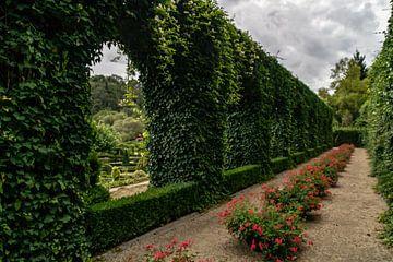 Parc des Topiaires in Durbuy van Paul Veen