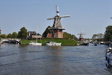 Gezicht op Dokkum met molens op het bolwerk van Tjamme Vis