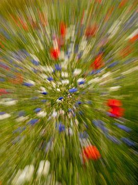 Bloemenexplosie van Rien de Hoop