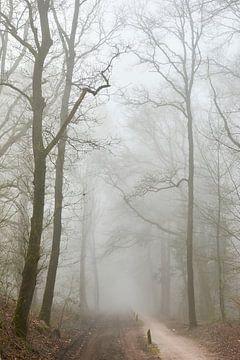 Sandpiste im Nebel von Jenco van Zalk