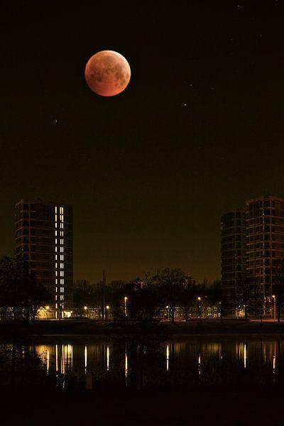 Bloedmaan boven Den Bosch van Jasper van de Gein Photography