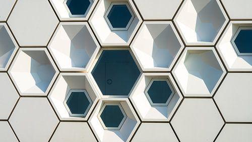 Honingraat architectuur modern museumgebouw
