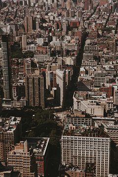 Manhattan New York van Amber den Oudsten