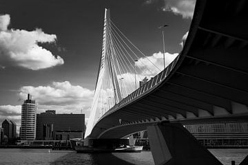 Rotterdam Erasmus brug van Mario Creanza