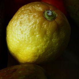 Lemon von Hans Heemsbergen