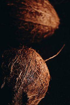 Noix de coco sur Marie Ndiaye