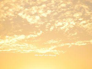 Golden Sky van