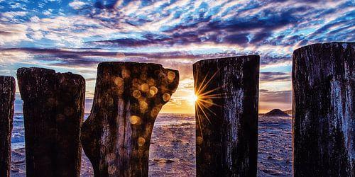 Paalhoofden bij ondergaande zon