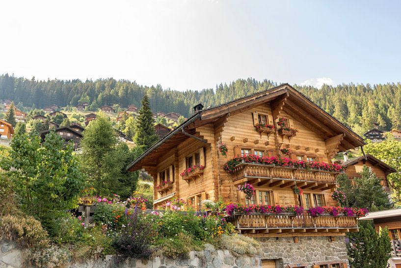 Maison de montagne typiquement suisse sur Sander de Jong