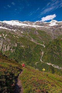 Wandelen in het Nationaal Park Hohe Tauern van Holger Spieker