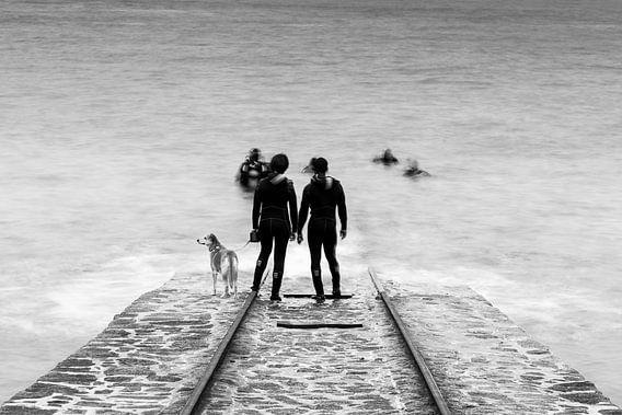 Duikers op de boothelling in Bretagne, Frankrijk (zwart-wit)