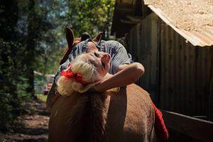 Pinup liegt sexy auf dem Rücken eines Pferdes