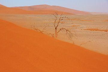 NAMIBIA ... Namib Desert Sandstorm II van Meleah Fotografie