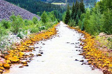 Rivier in Colorado (Durango) van