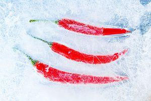 Red Peppers on ice. van Hennnie Keeris