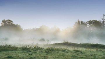 Nebel im Markdal,Breda von Saskia Dingemans